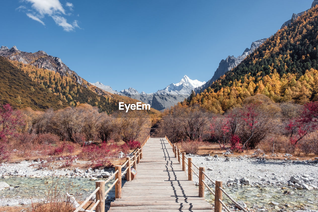 beauty in nature, mountain, sky, tree, tranquility, tranquil scene, plant, nature, scenics - nature, the way forward, direction, no people, non-urban scene, day, idyllic, autumn, change, footpath, cold temperature, mountain range, outdoors, footbridge