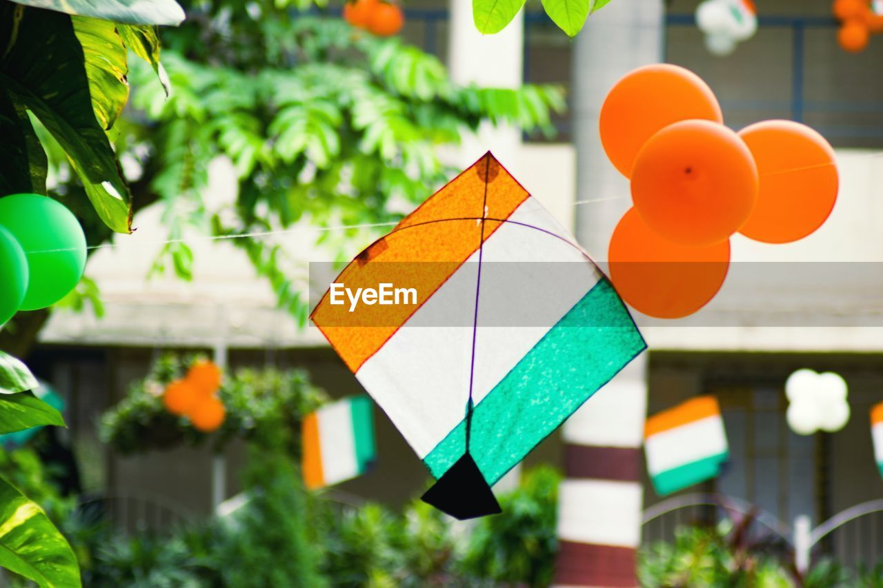 focus on foreground, no people, multi colored, green color, plant, close-up, day, outdoors, hanging, nature, shape, orange color, architecture, art and craft, growth, building exterior, decoration, yellow, selective focus, built structure