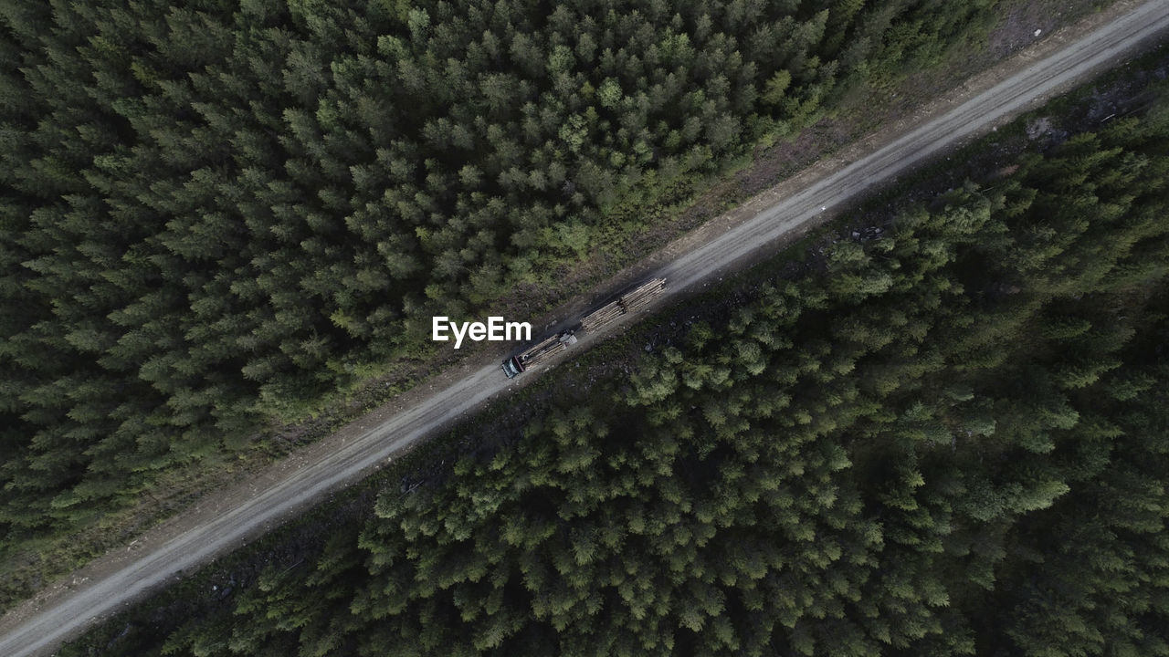 Aerial View Of Timber Truck Driving On Dirt Road In Forest