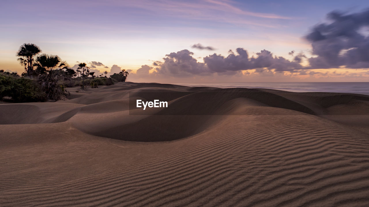 sand, scenics - nature, sky, sand dune, desert, landscape, land, tranquil scene, beauty in nature, tranquility, non-urban scene, climate, arid climate, sunset, cloud - sky, environment, remote, nature, no people, idyllic, outdoors, atmospheric