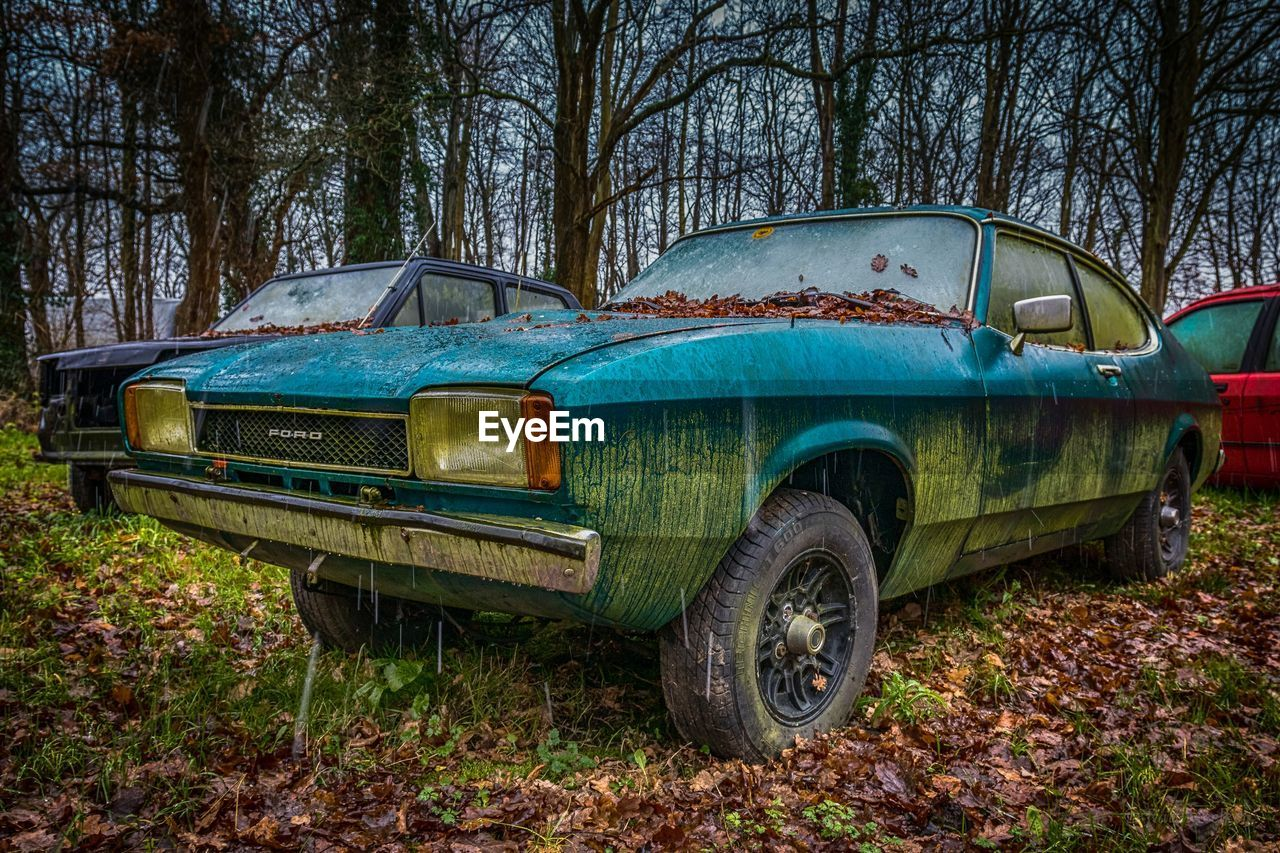 ABANDONED CAR IN FOREST DURING AUTUMN