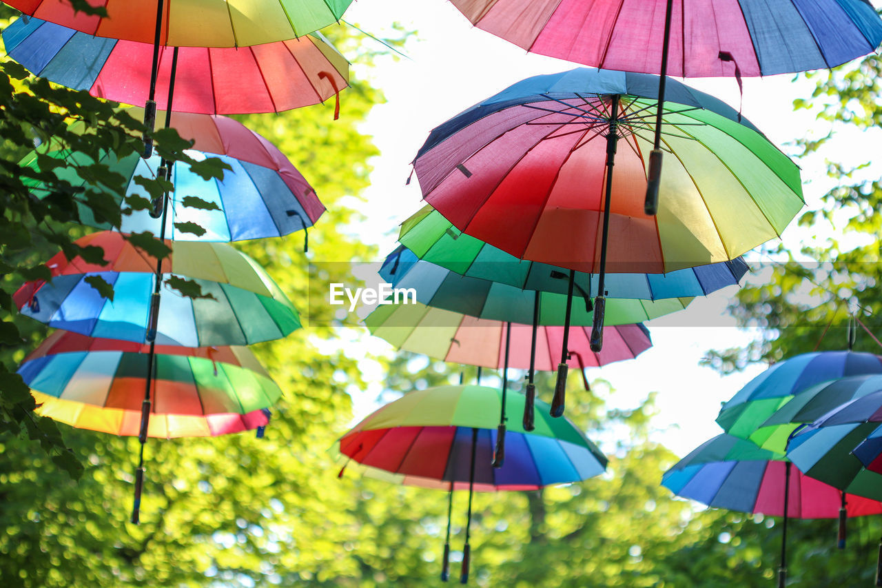 multi colored, protection, umbrella, hanging, security, day, low angle view, variation, choice, nature, no people, large group of objects, outdoors, parasol, tree, decoration, focus on foreground, sunlight, in a row