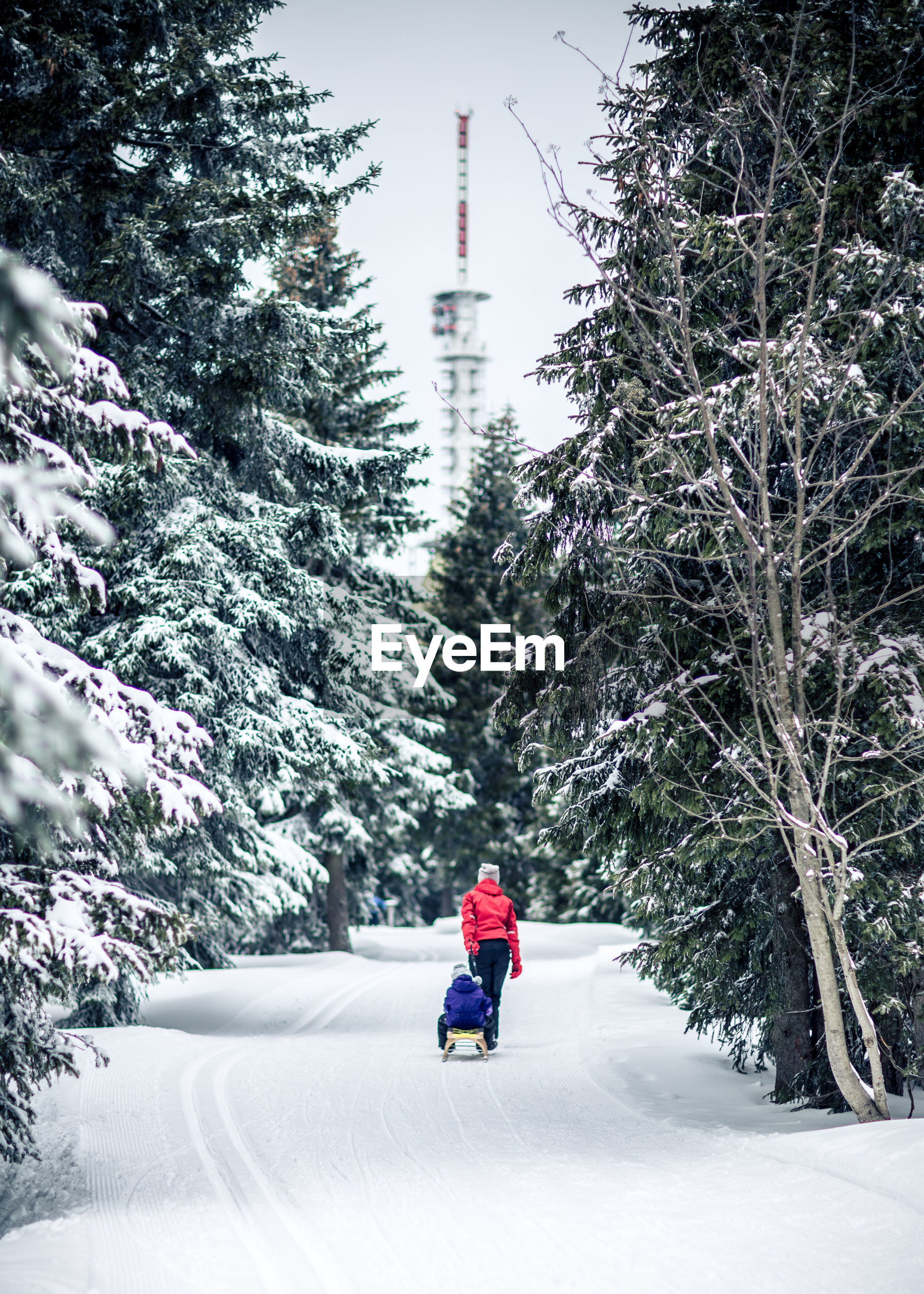Rear view of woman with baby stroller walking on snow covered field