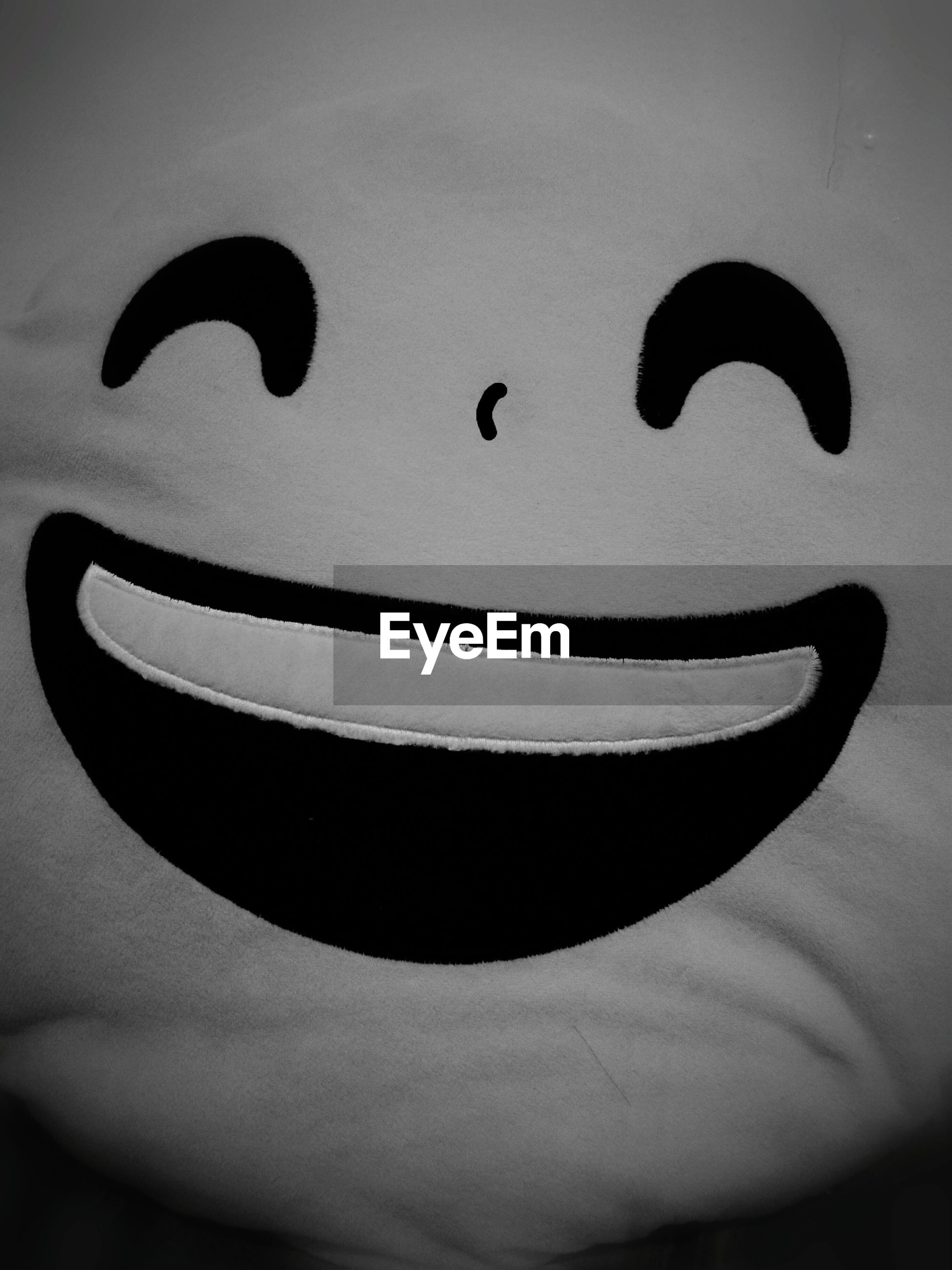 anthropomorphic face, anthropomorphic smiley face, close-up, no people, smiley face, indoors, animal themes, day