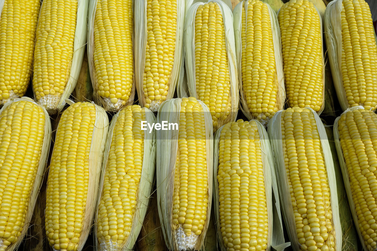 Full Frame Shot Of Yellow Corns