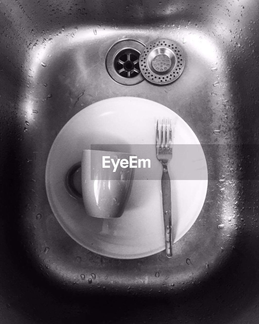 sink, fork, indoors, plate, domestic kitchen, water, no people, faucet, close-up, domestic room, bathroom sink, day