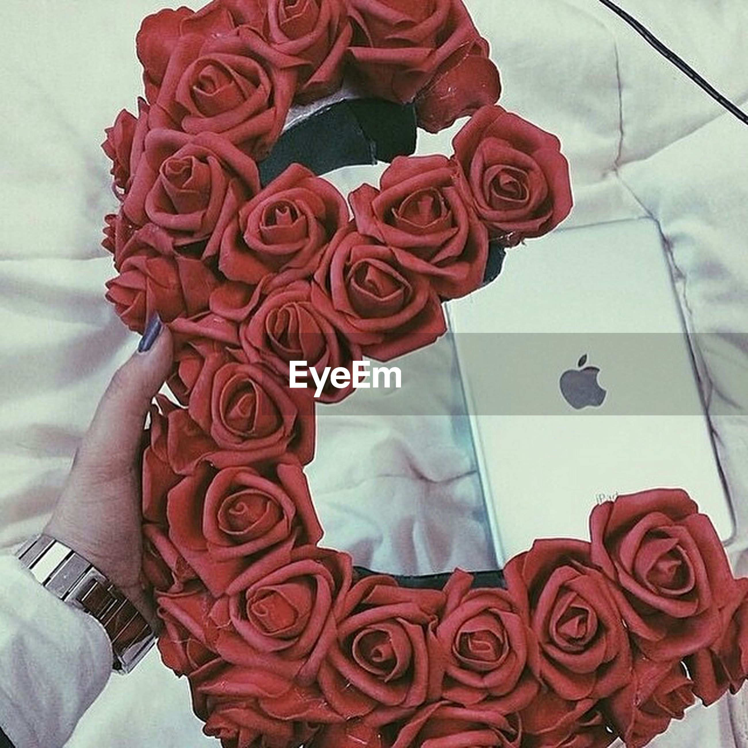 red, flower, rose - flower, indoors, petal, rose, high angle view, close-up, pink color, flower head, fragility, freshness, no people, beauty in nature, day, nature, softness, bouquet, fabric, love