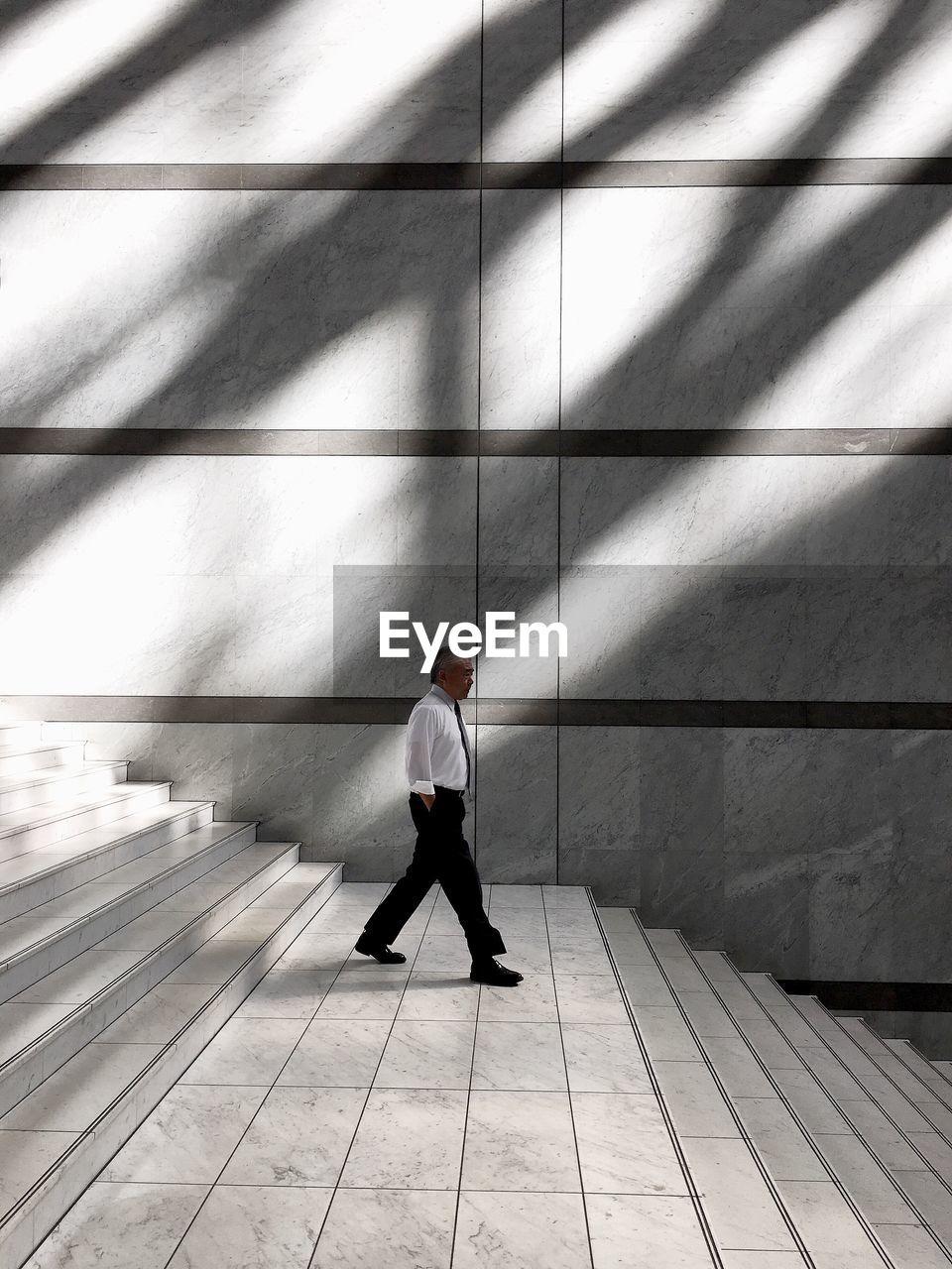 FULL LENGTH OF A MAN WALKING ON ZEBRA