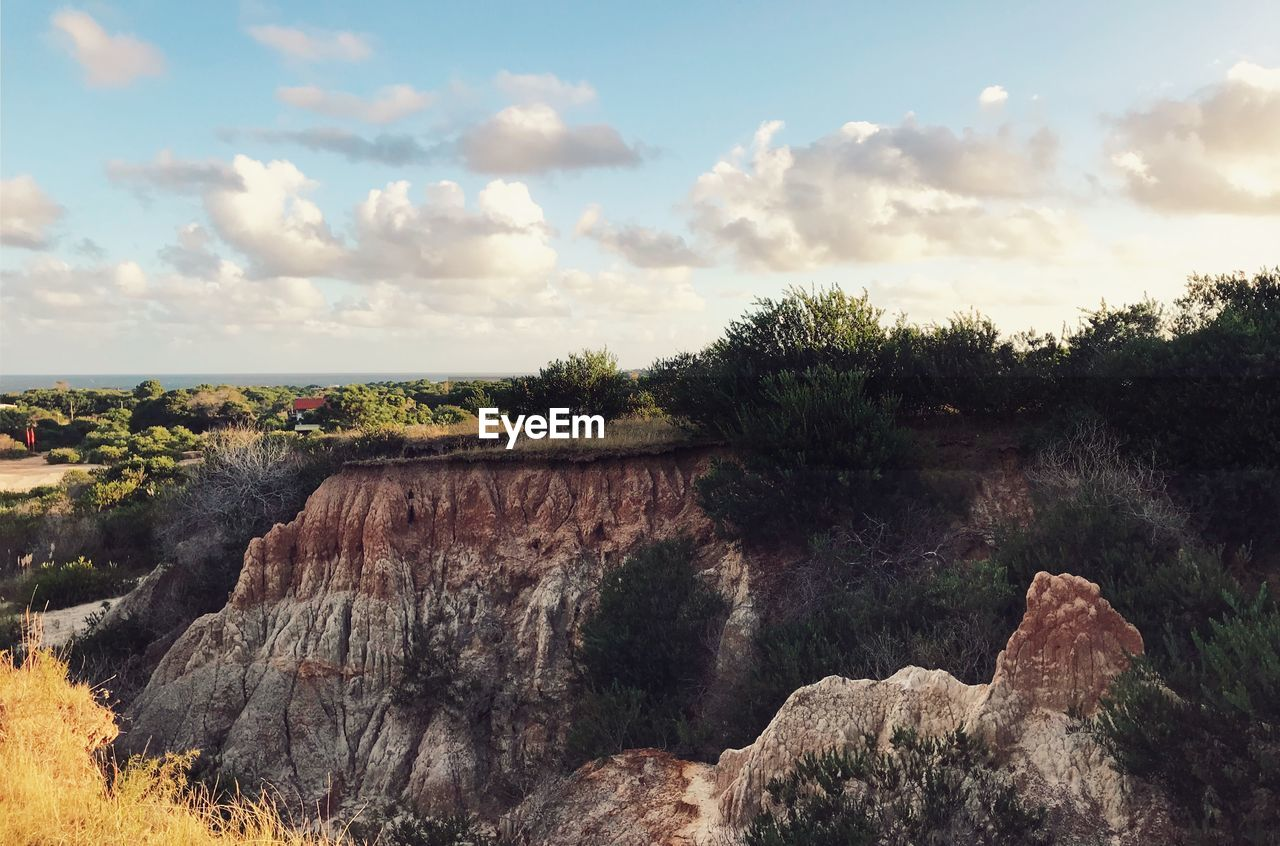 sky, cloud - sky, beauty in nature, tree, nature, plant, scenics - nature, tranquil scene, environment, tranquility, landscape, rock, no people, non-urban scene, rock - object, day, growth, water, outdoors, land, eroded