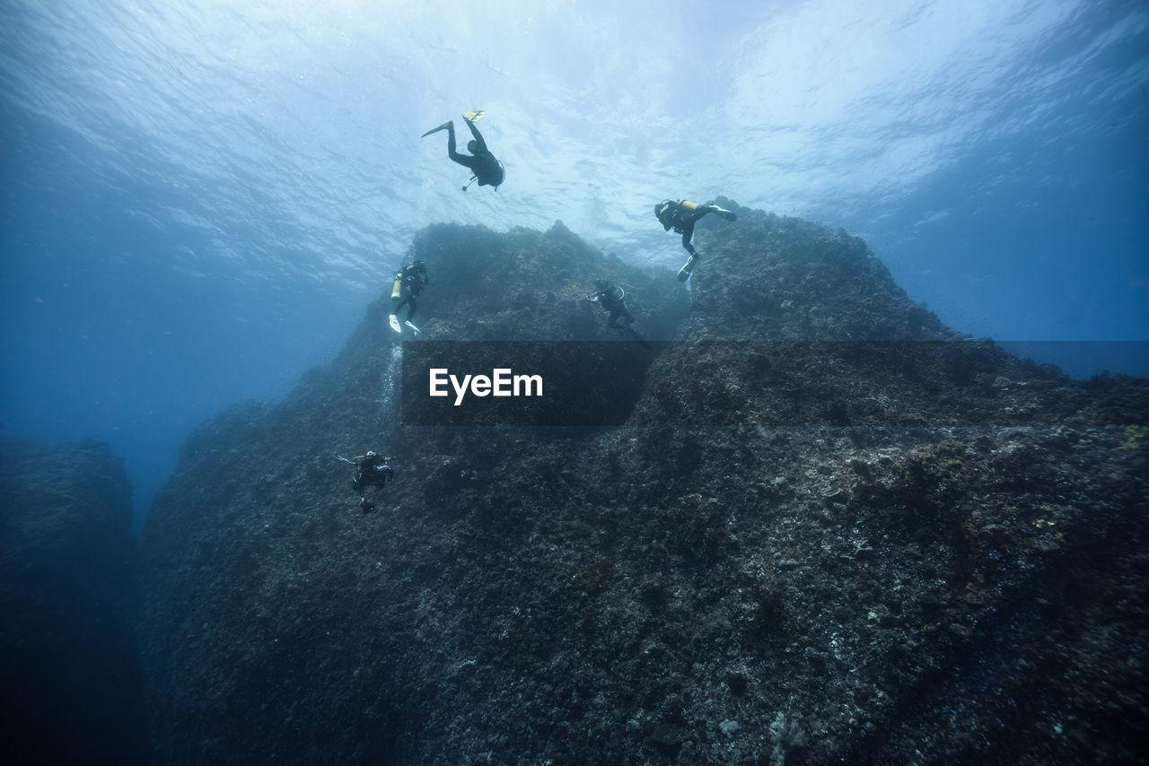 Close-Up Of Scuba Divers Undersea