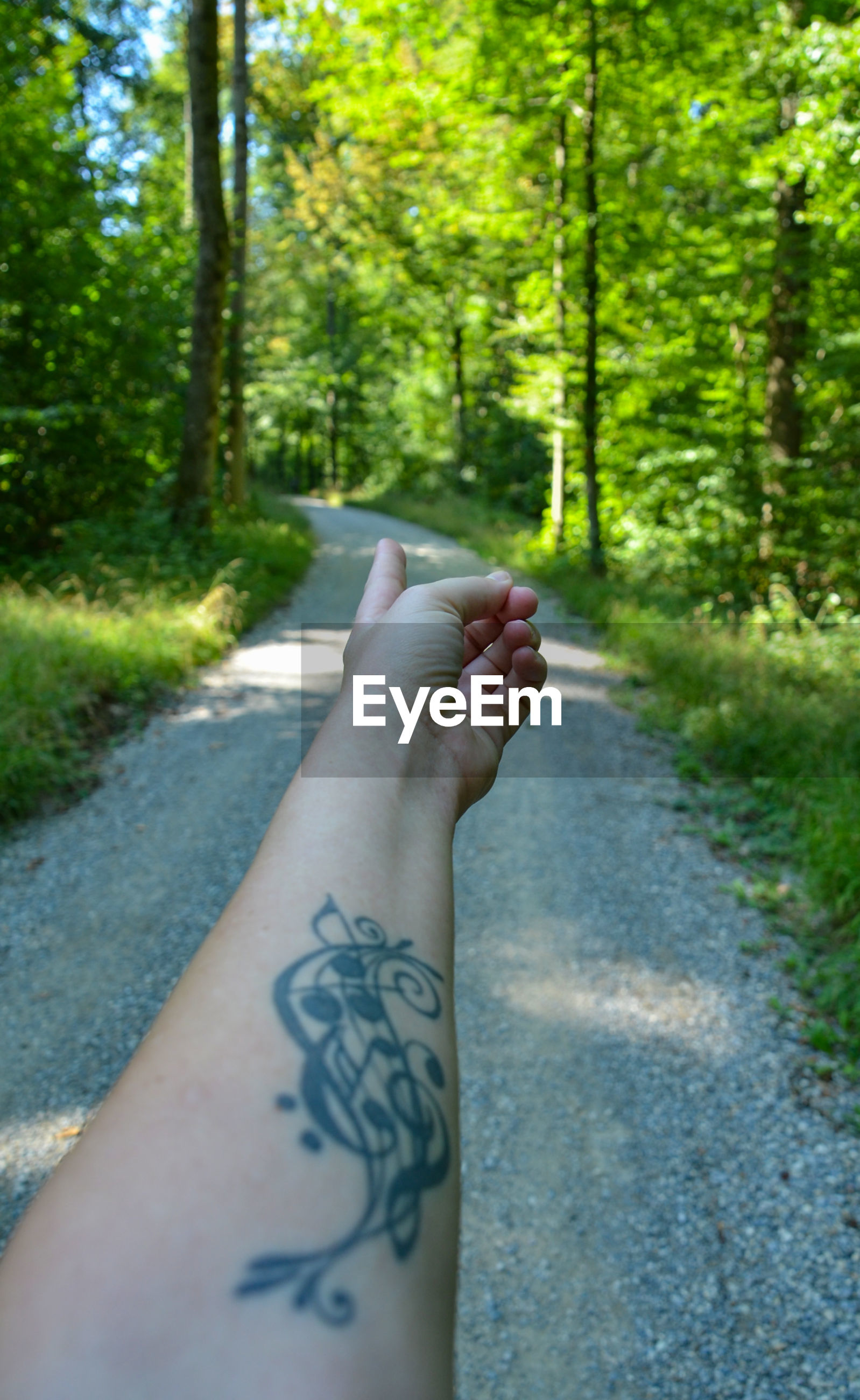 Cropped image of tattooed hand gesturing against trees