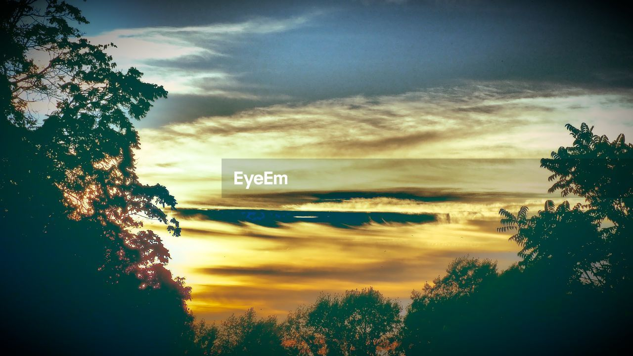 sky, cloud - sky, tree, plant, beauty in nature, scenics - nature, sunset, tranquil scene, tranquility, nature, silhouette, no people, idyllic, orange color, outdoors, non-urban scene, dramatic sky, land, sunlight, growth