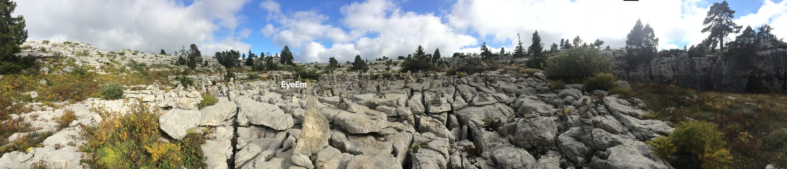 sky, tranquility, tranquil scene, nature, cloud - sky, scenics, beauty in nature, landscape, cloud, panoramic, blue, tree, day, sunlight, non-urban scene, growth, rock - object, low angle view, outdoors, no people