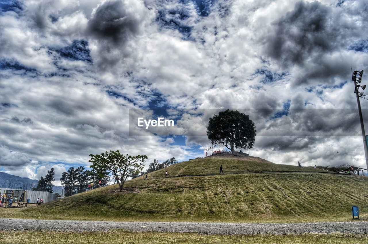 cloud - sky, sky, day, tree, grass, nature, outdoors, landscape, tranquility, growth, scenics, beauty in nature, no people