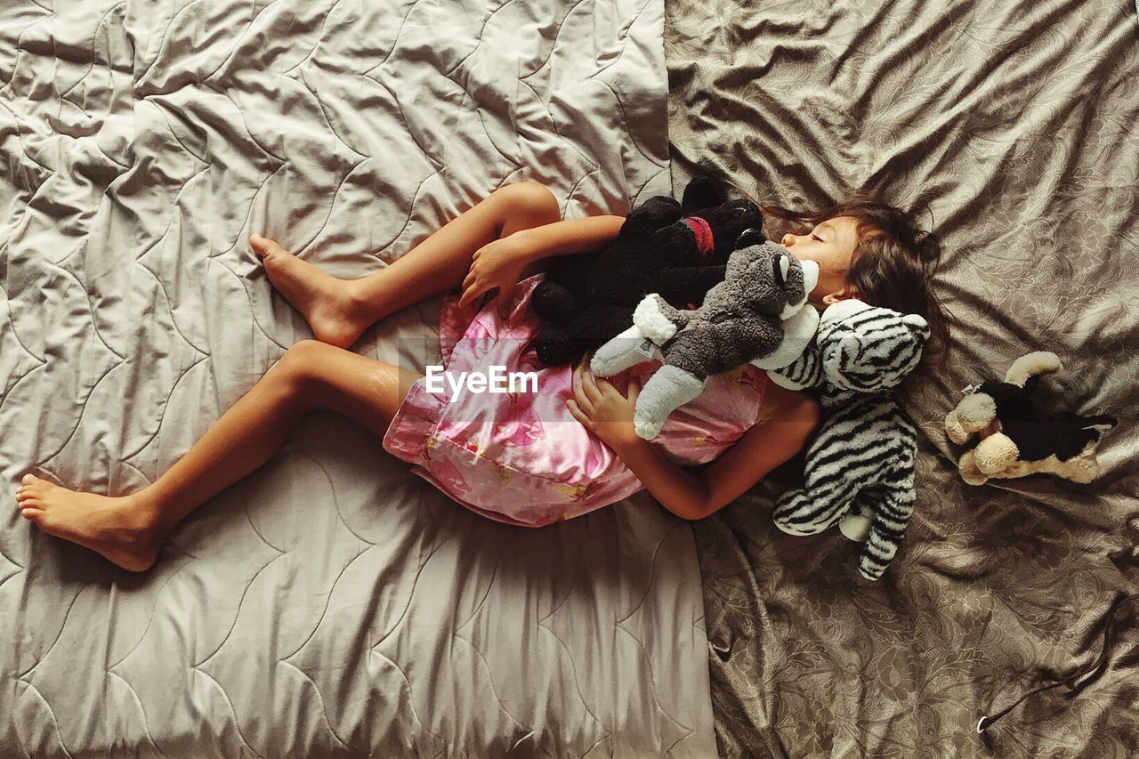 Directly Above Shot Of Girl With Stuffed Toys Sleeping On Bed At Home