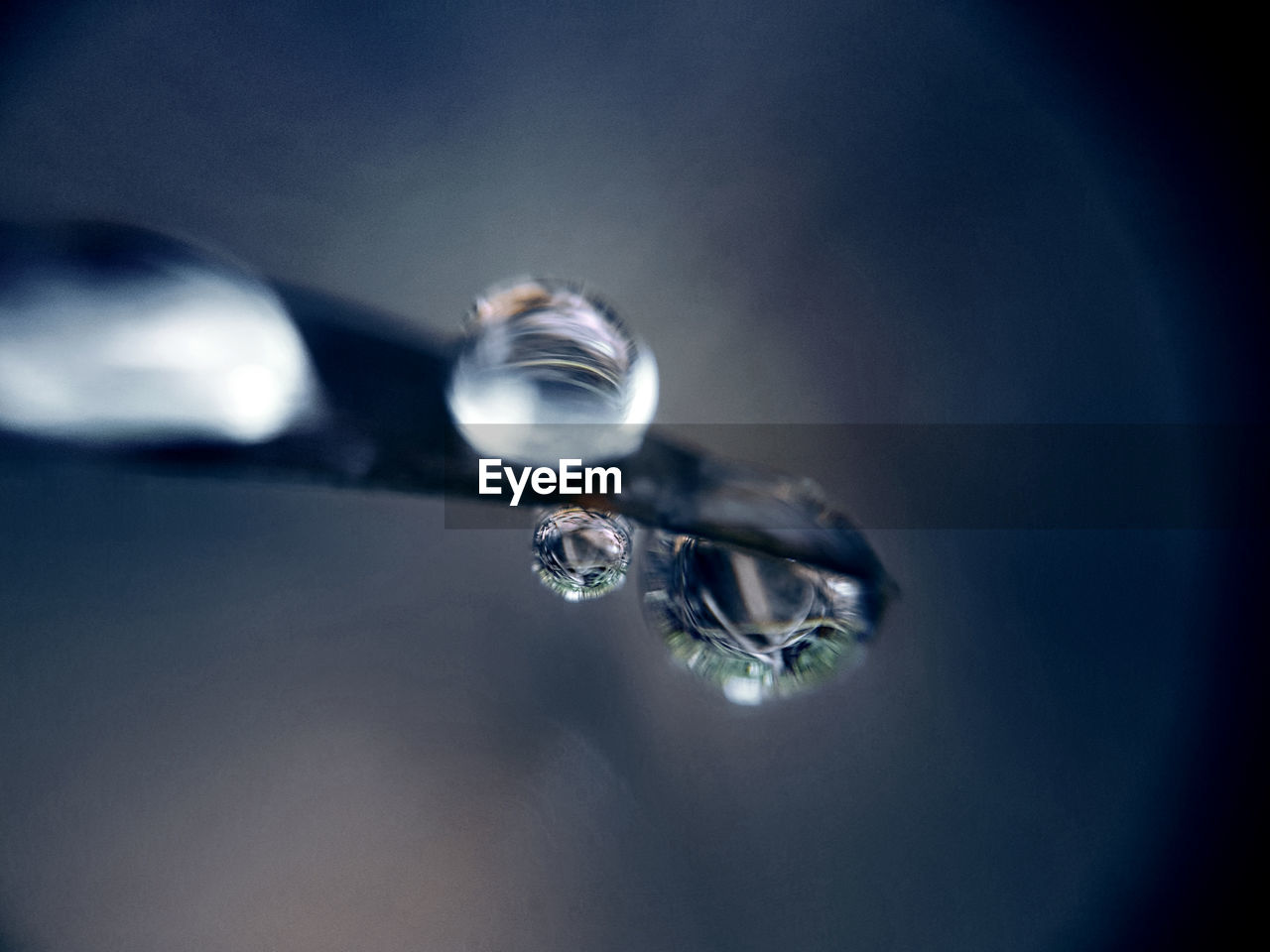 close-up, water, selective focus, drop, no people, fragility, purity, nature, day, indoors, beauty in nature, refraction, freshness