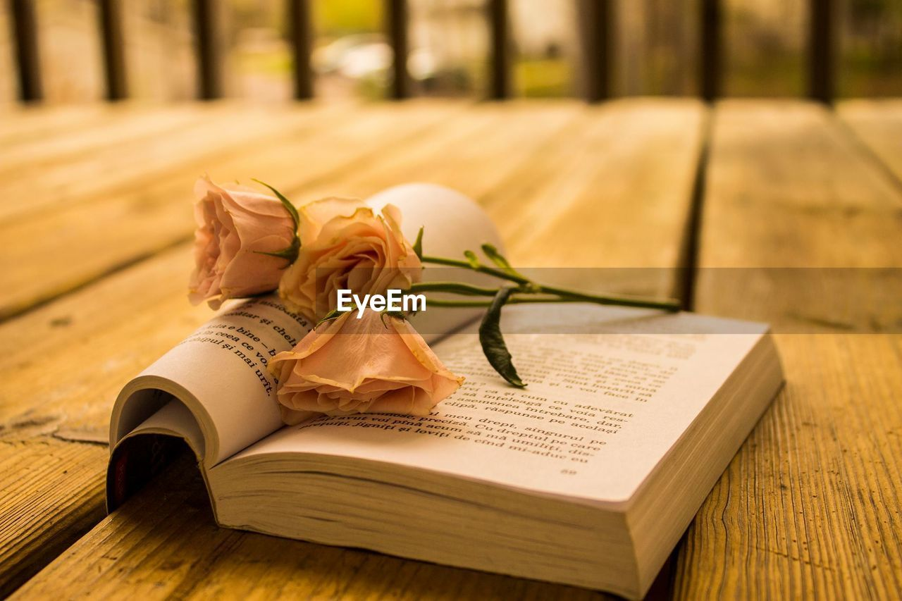 book, wood - material, still life, table, text, indoors, tied up, wedding, no people, life events, flower, close-up, day, nature