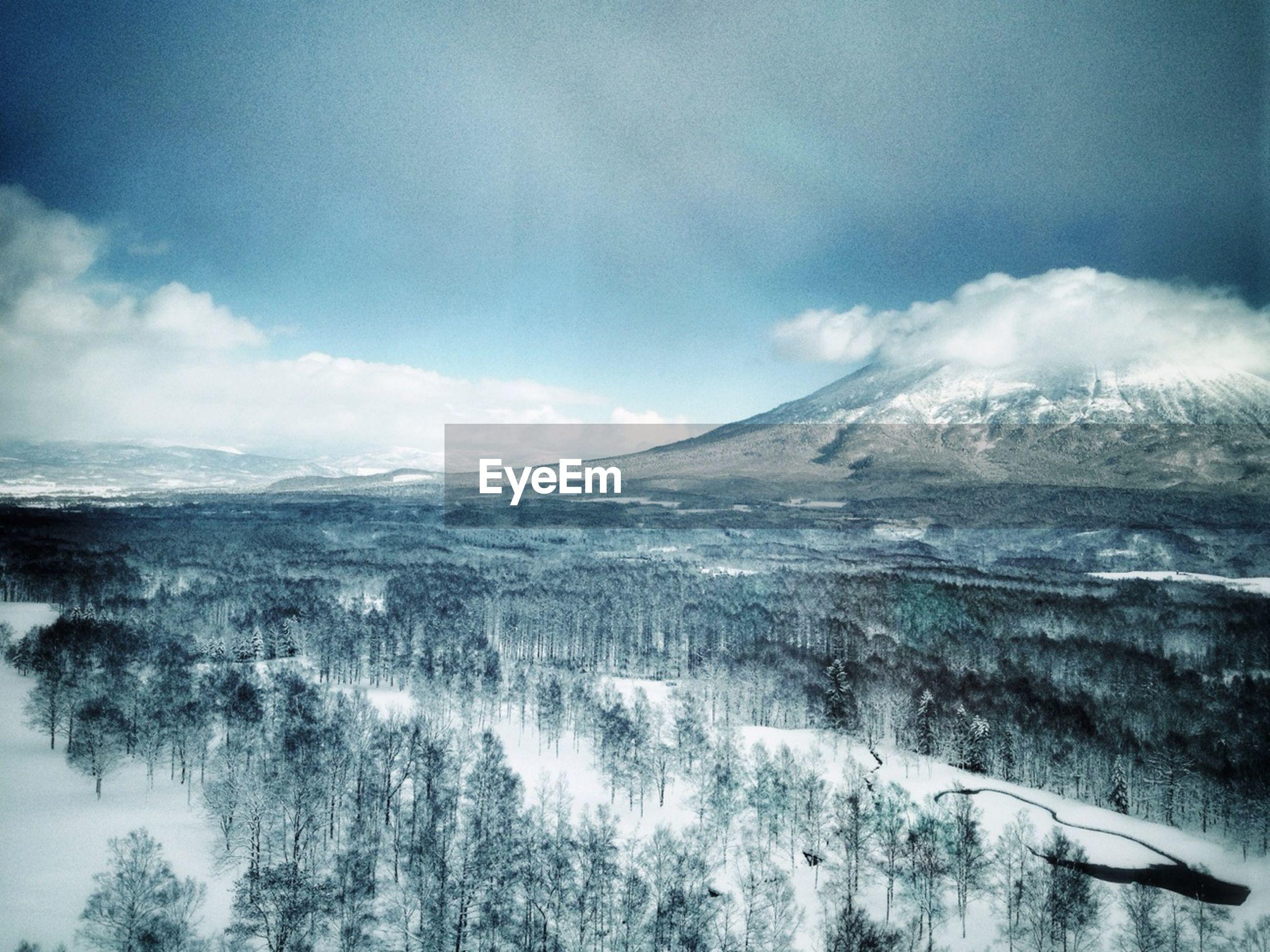 Snowcapped landscape