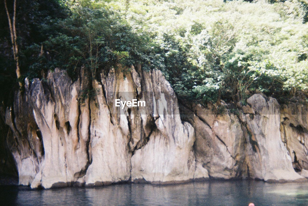 tree, water, nature, rock, sea, environment, no people, outdoors, landscape, land, plant, day, rock - object, tranquility, tranquil scene, solid, wilderness, rock formation, beauty in nature, eroded