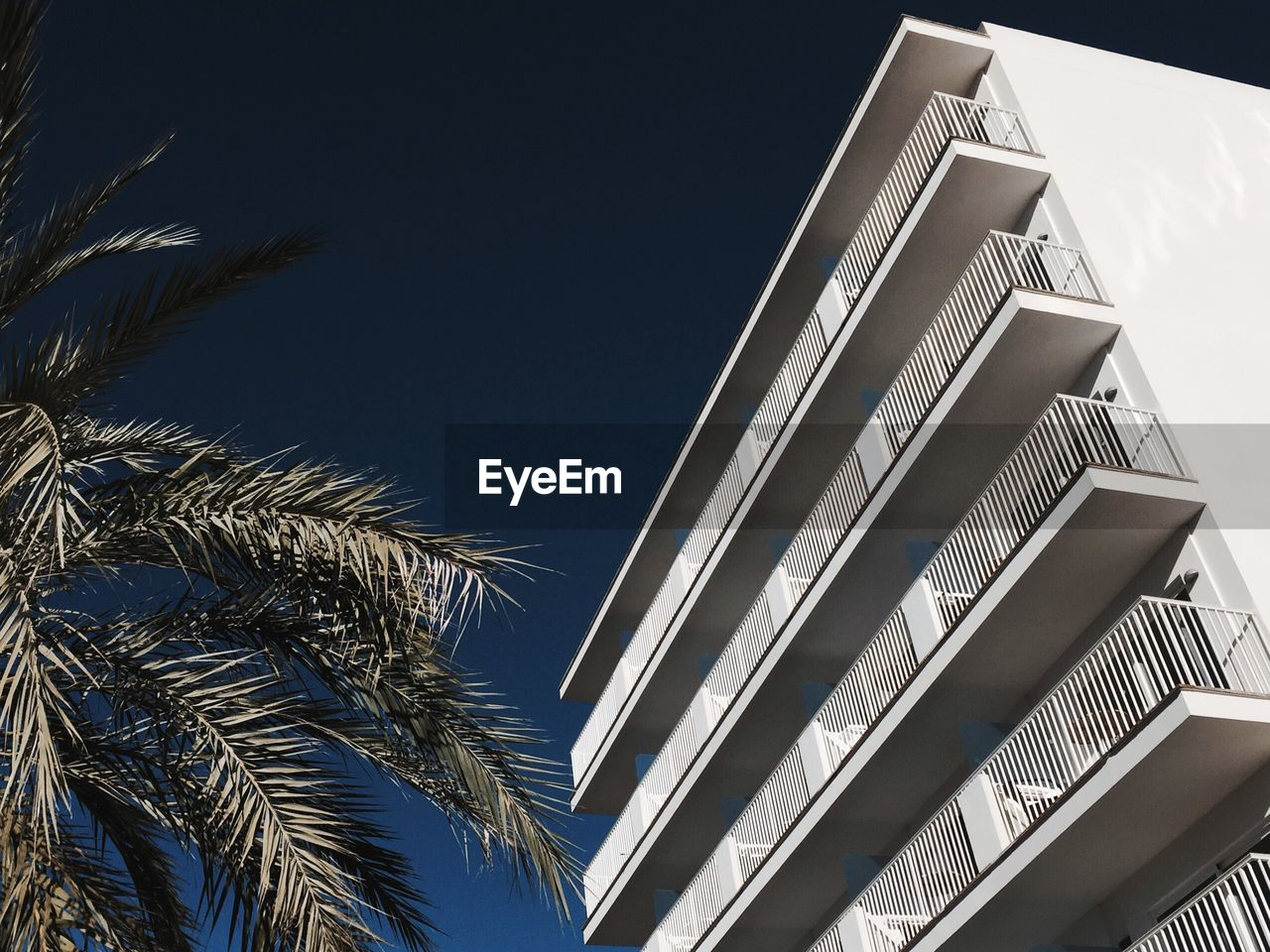 Low Angle View Of Hotel By Palm Tree Against Clear Sky