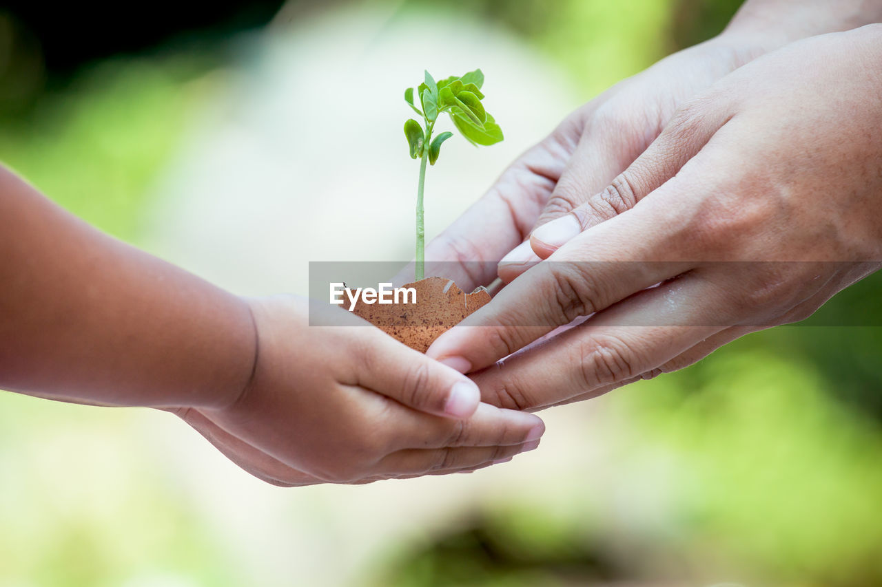 Cropped Image Of Woman Giving Sapling In Egg Shell To Girl