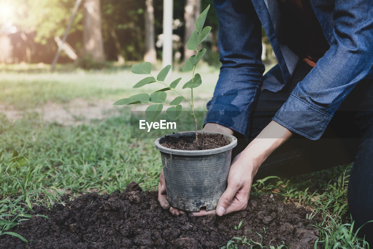 plant, growth, real people, one person, nature, container, land, green color, day, field, plant part, basket, leaf, low section, human body part, holding, lifestyles, outdoors, human hand, body part, gardening, hand, farmer, planting