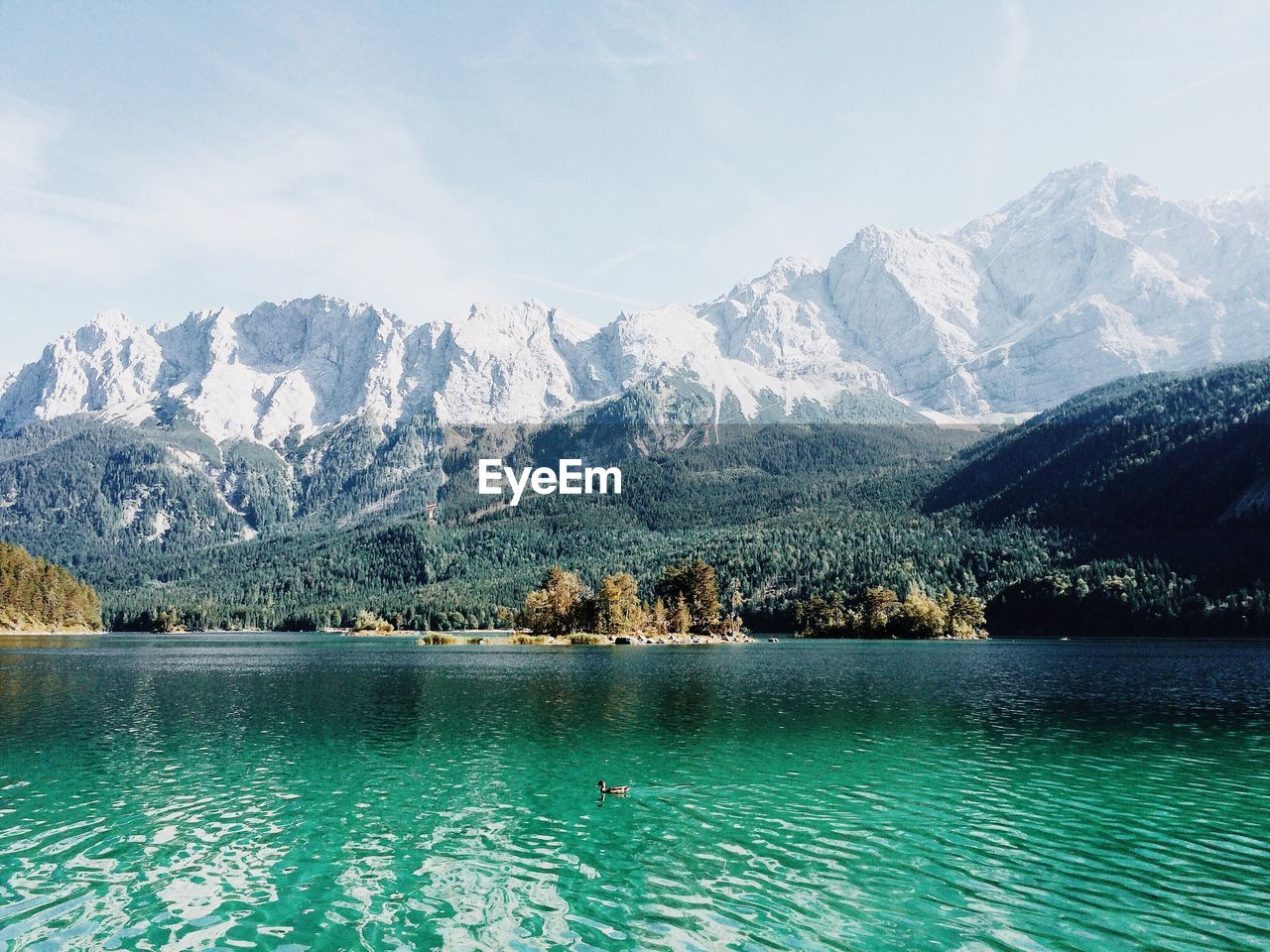 Duck Swimming In Lake Against Snowcapped Mountains