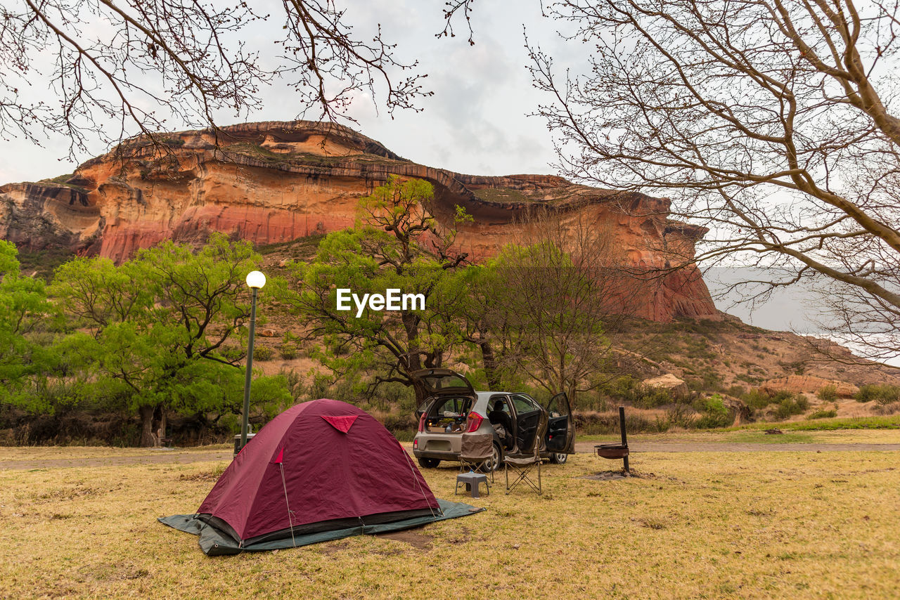tree, nature, camping, tent, beauty in nature, landscape, growth, grass, adventure, scenics, outdoors, day, sky, no people