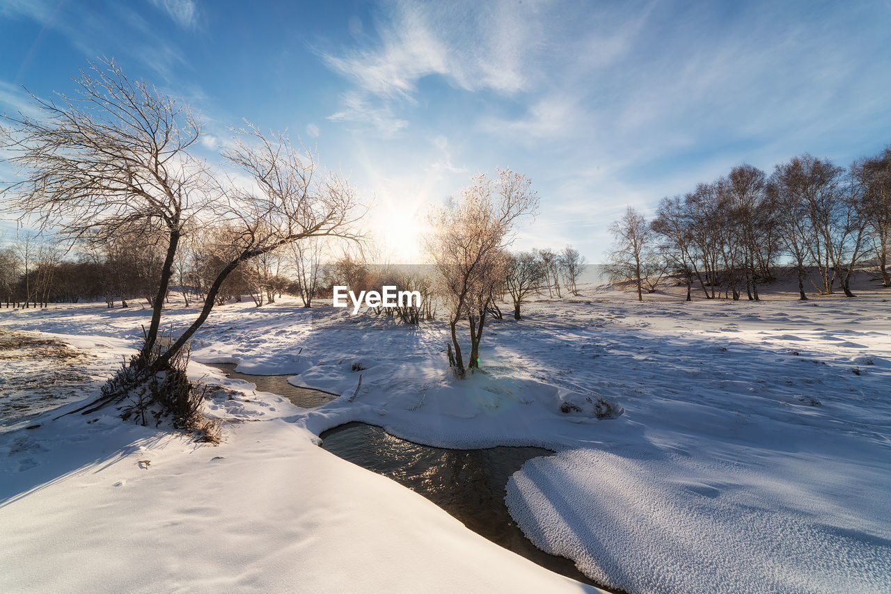 SNOW COVERED LAND AND BARE TREES AGAINST SKY