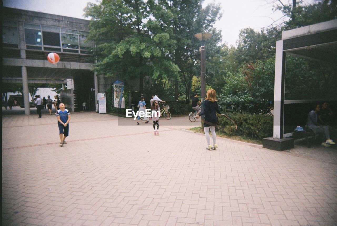 playing, tree, people, childhood, outdoors, full length, friendship, day, basketball - sport, adult