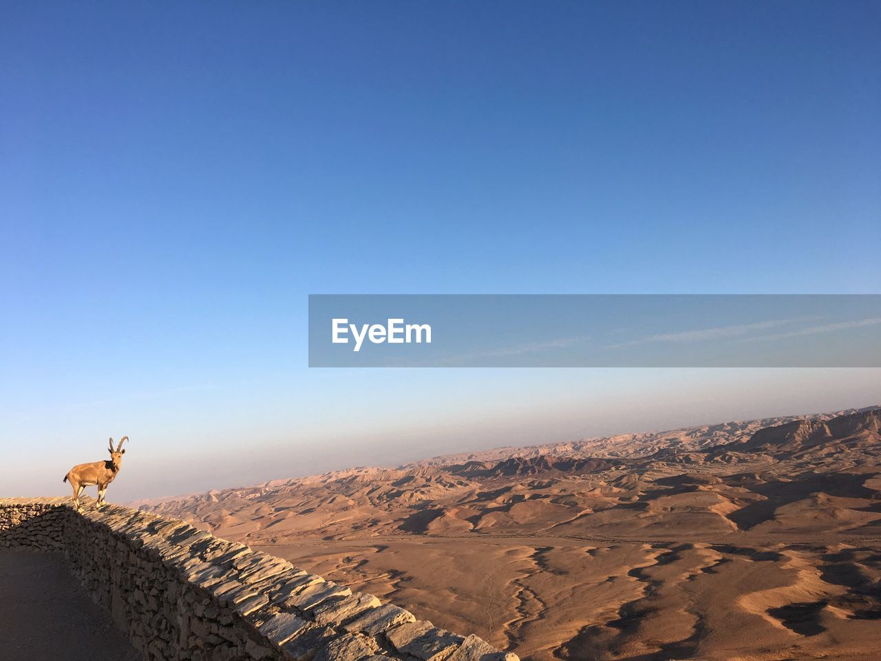 sky, scenics - nature, copy space, environment, landscape, beauty in nature, nature, non-urban scene, day, desert, tranquility, tranquil scene, clear sky, climate, arid climate, blue, remote, sunlight, no people, idyllic, outdoors