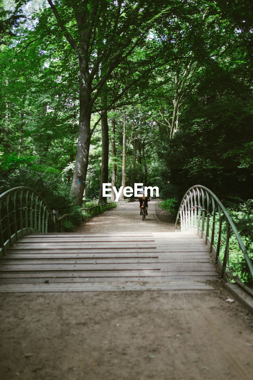 tree, direction, the way forward, plant, real people, full length, transportation, one person, rear view, walking, growth, day, connection, nature, lifestyles, footpath, forest, bridge, architecture, outdoors, bridge - man made structure, diminishing perspective