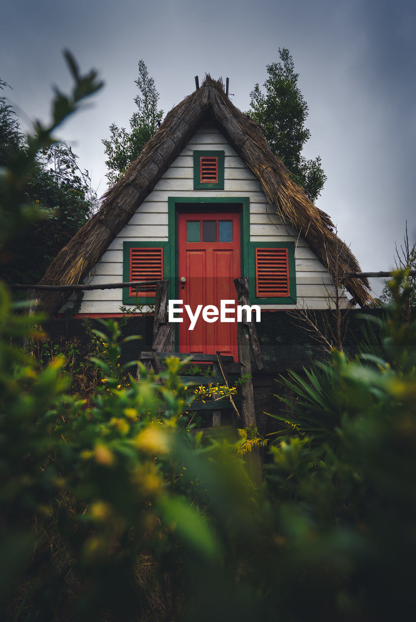 plant, architecture, built structure, building exterior, building, tree, house, no people, nature, growth, focus on background, green color, day, selective focus, outdoors, red, residential district, sky, window, beauty in nature, cottage