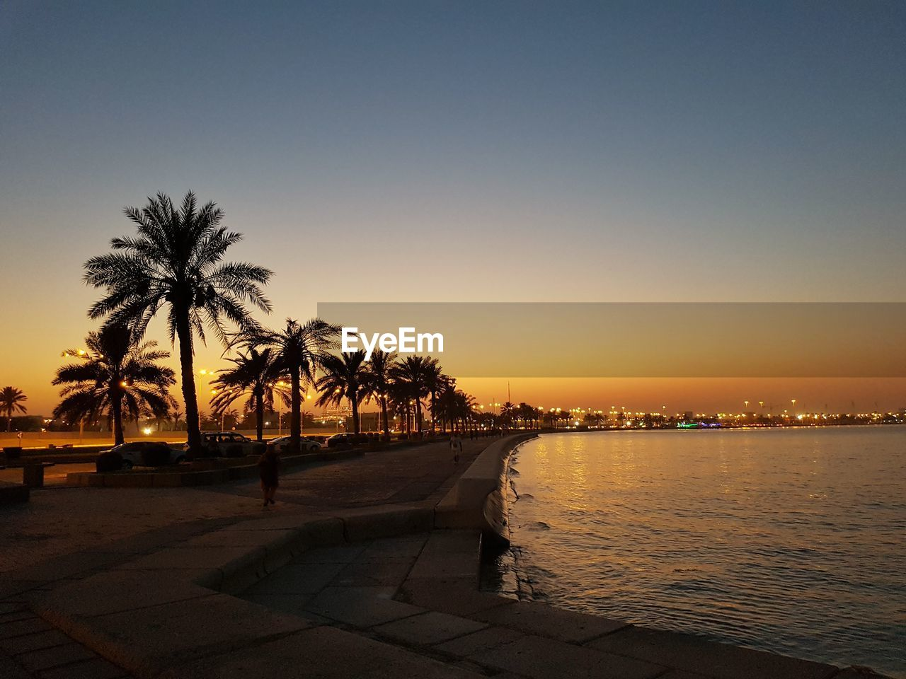 sky, palm tree, tropical climate, sunset, tree, water, nature, clear sky, plant, sea, architecture, beauty in nature, beach, copy space, silhouette, no people, scenics - nature, orange color, city, swimming pool, outdoors, coconut palm tree, promenade