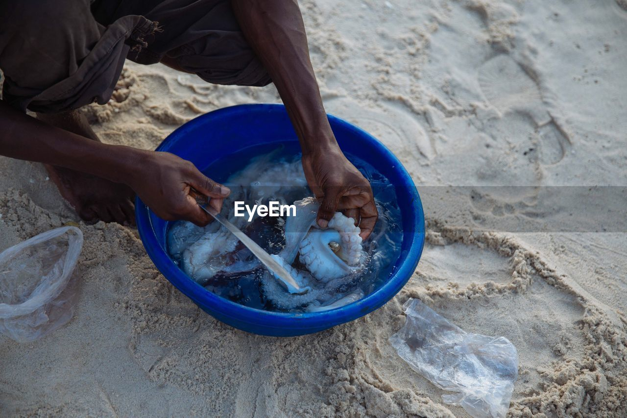 High Angle View Of Man Cutting Seafood At Beach