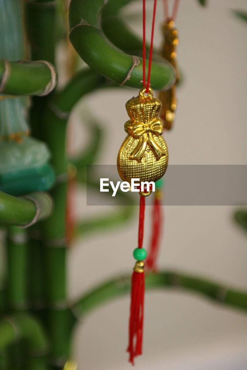Close-up of gold decoration by houseplant at home