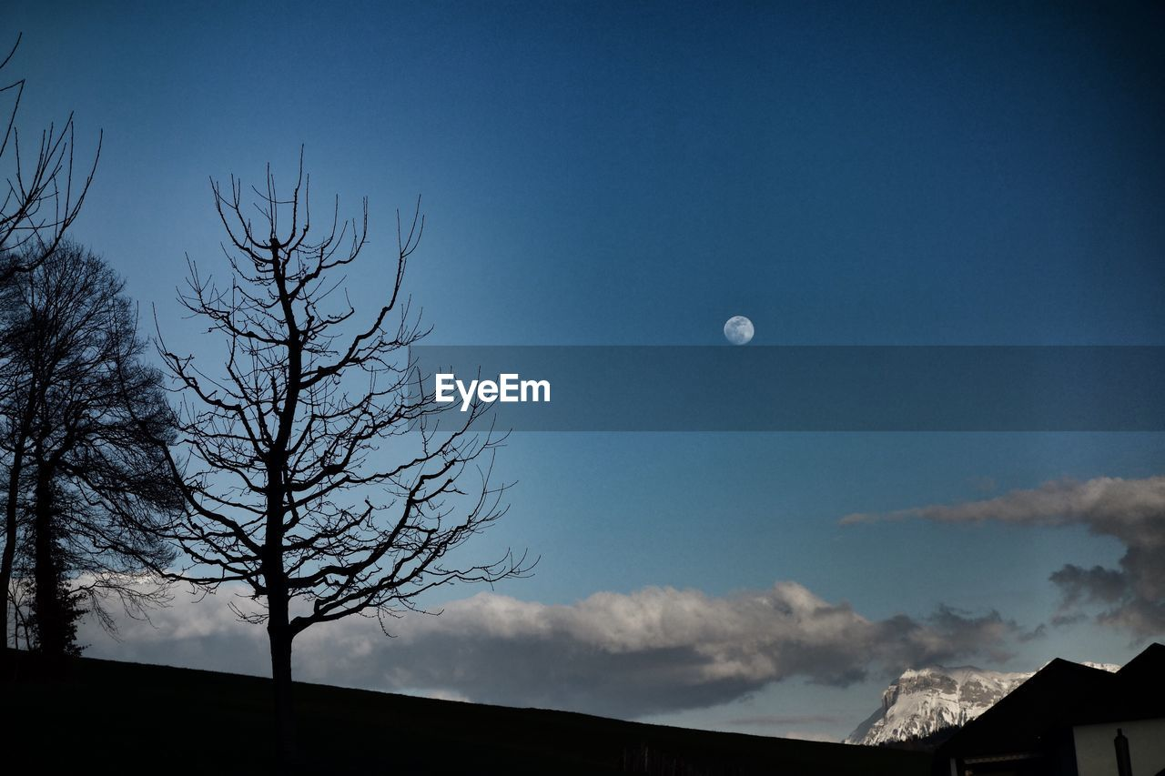 sky, moon, tree, bare tree, dusk, nature, night, full moon, beauty in nature, cloud - sky, no people, architecture, low angle view, blue, silhouette, outdoors, scenics - nature, crescent, tranquility, tranquil scene, astronomy, planetary moon