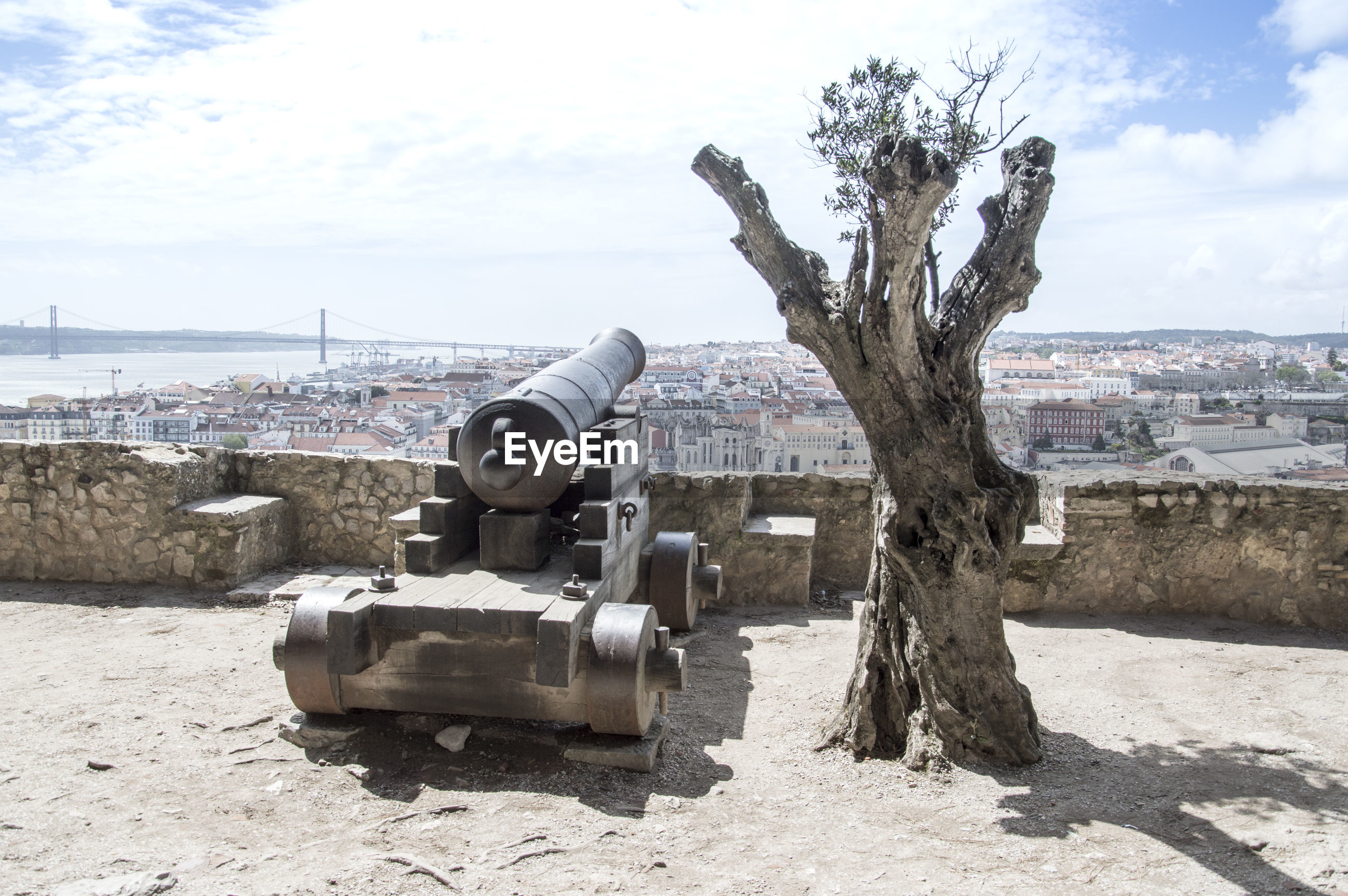 View of tree and cannon against sky