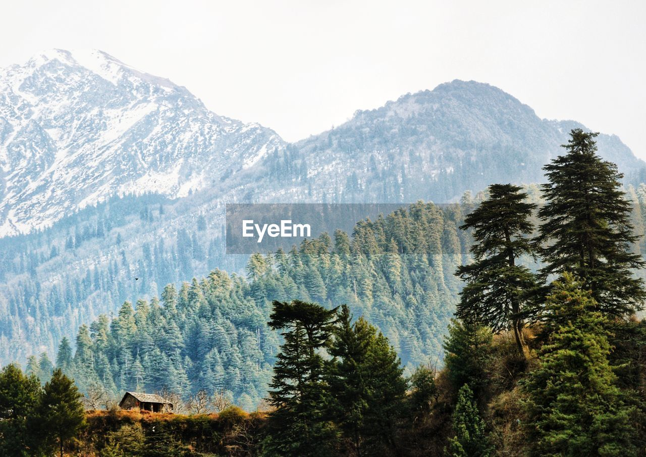 mountain, adventure, nature, forest, tree, landscape, peak, pine tree, scenery, no people, high, beauty in nature, height, outdoors, range, day, sky