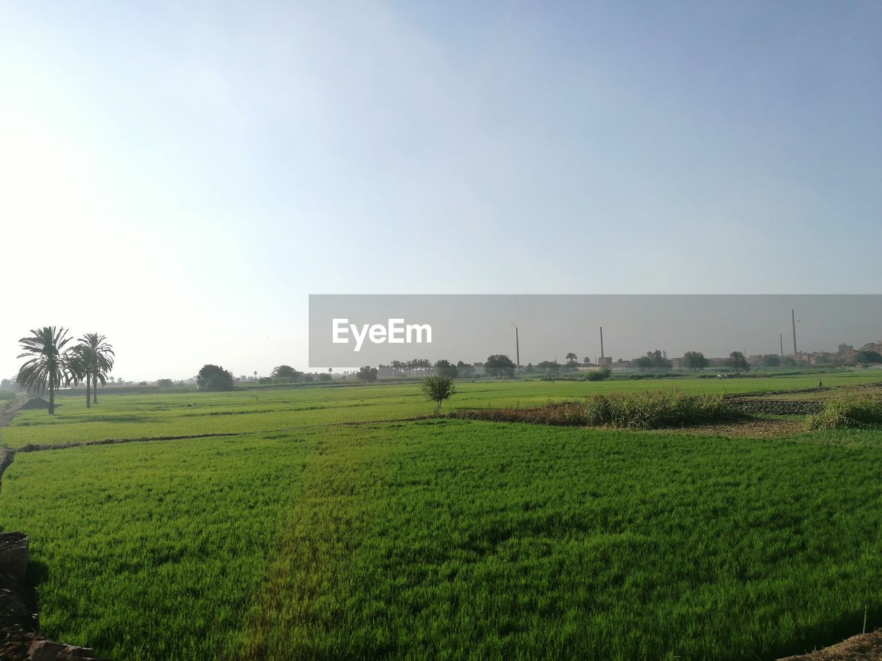 Farm Against Sky On Sunny Day