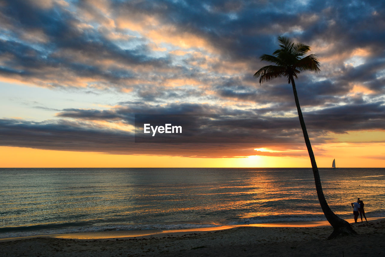 Palm Tree At Beach Against Cloudy Sky During Sunset