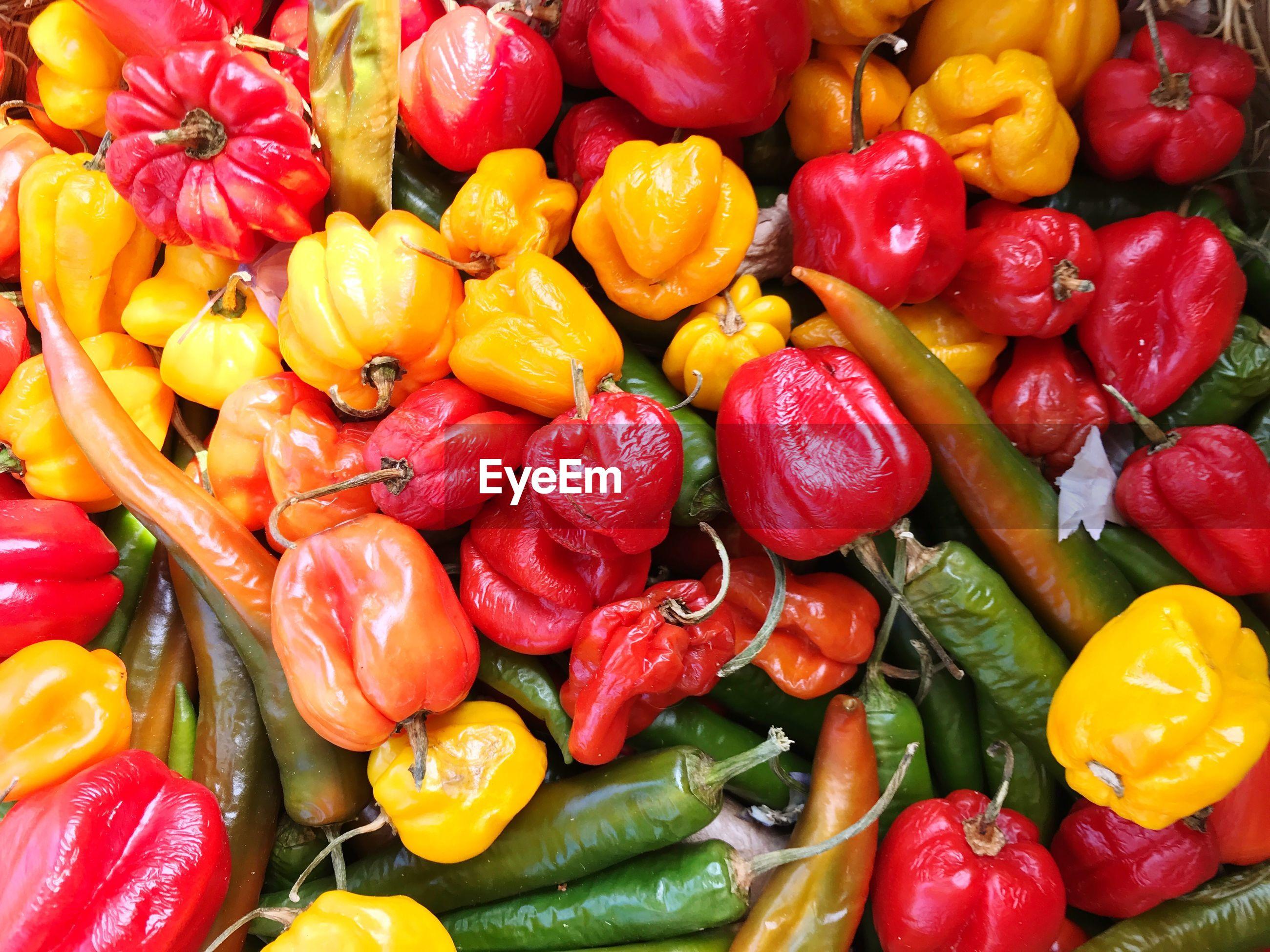 Full frame shot of multi colored peppers