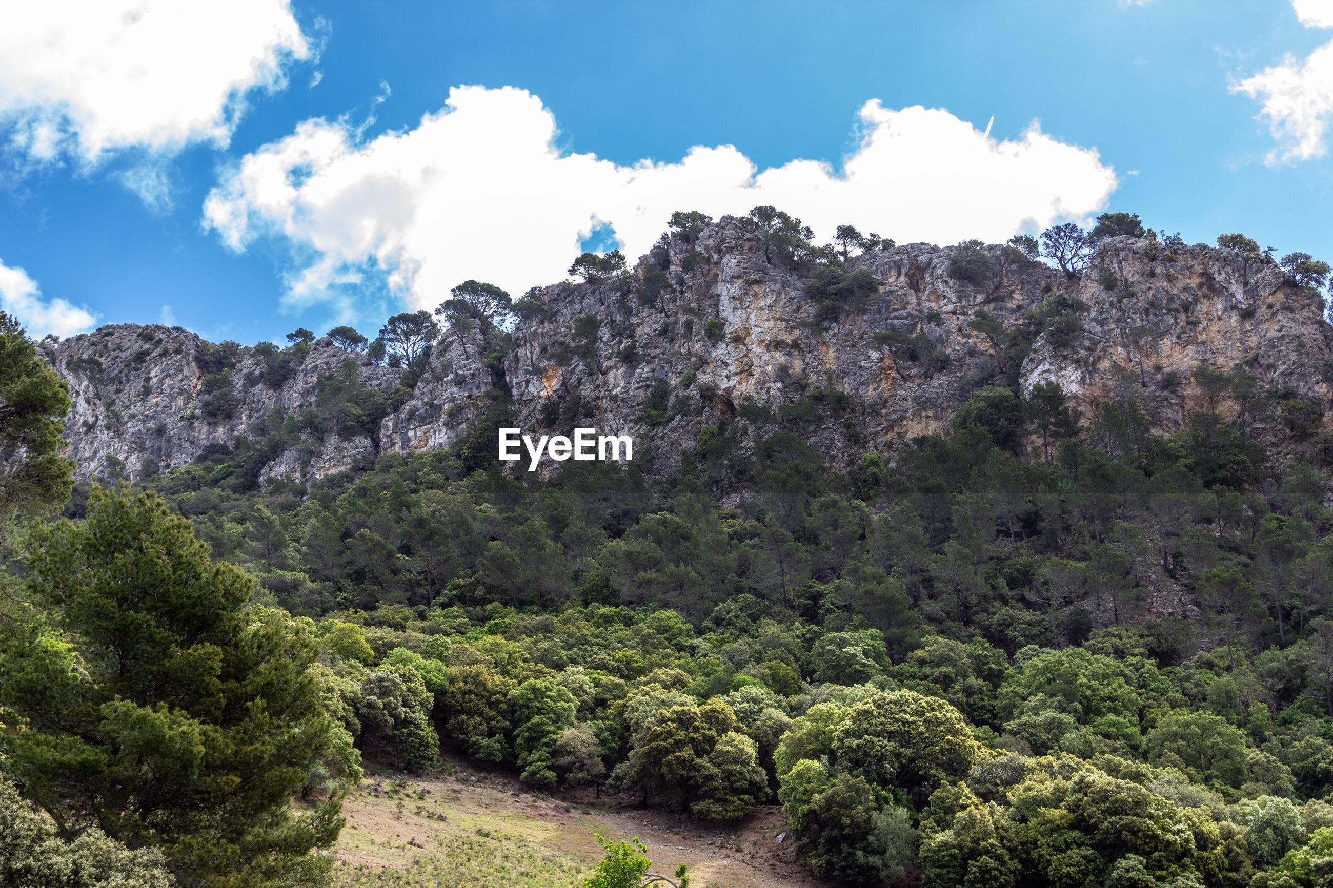 Scenic view at landscape from coll de soller, mallorca