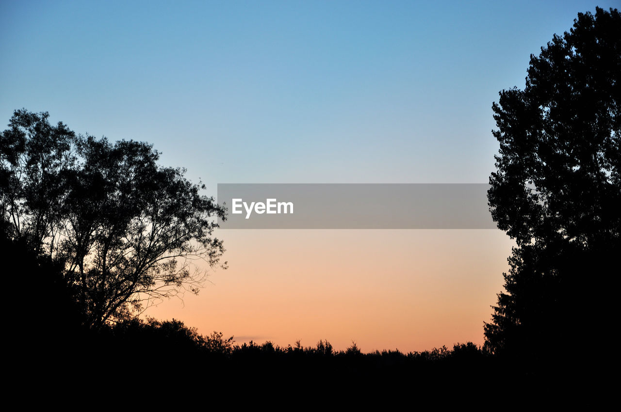tree, sky, silhouette, plant, sunset, tranquility, beauty in nature, tranquil scene, scenics - nature, growth, nature, no people, clear sky, non-urban scene, orange color, copy space, idyllic, outdoors, land, field