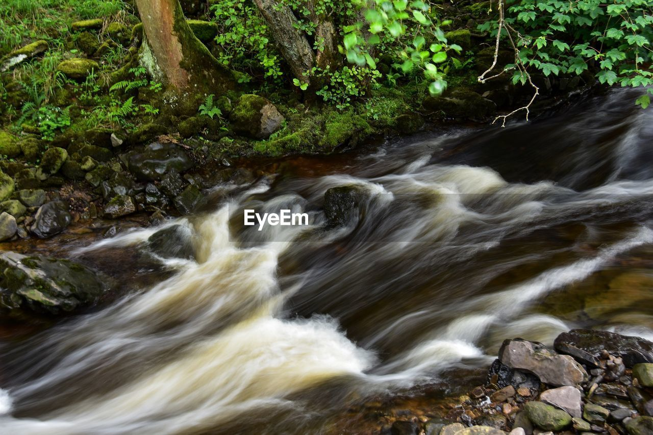 motion, blurred motion, water, solid, rock, rock - object, beauty in nature, waterfall, nature, long exposure, no people, plant, flowing water, forest, day, land, scenics - nature, flowing, tree, outdoors, power in nature, rainforest