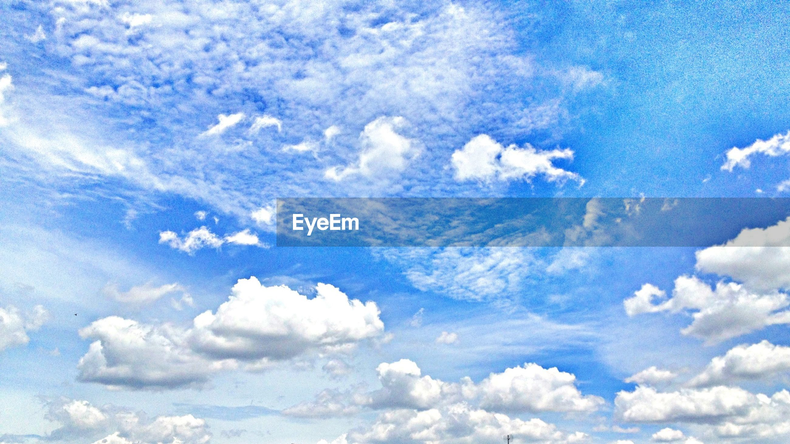 sky, beauty in nature, sky only, blue, cloud - sky, tranquility, low angle view, scenics, backgrounds, nature, tranquil scene, white color, full frame, cloudscape, cloudy, cloud, idyllic, white, day, fluffy