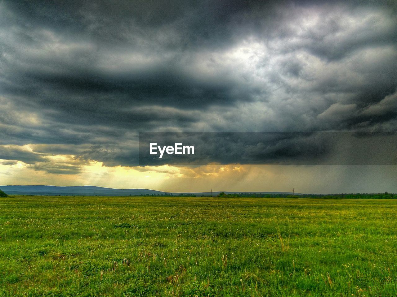 landscape, field, nature, beauty in nature, sky, scenics, tranquil scene, tranquility, cloud - sky, no people, grass, agriculture, outdoors, storm cloud, rural scene, growth, day, tree