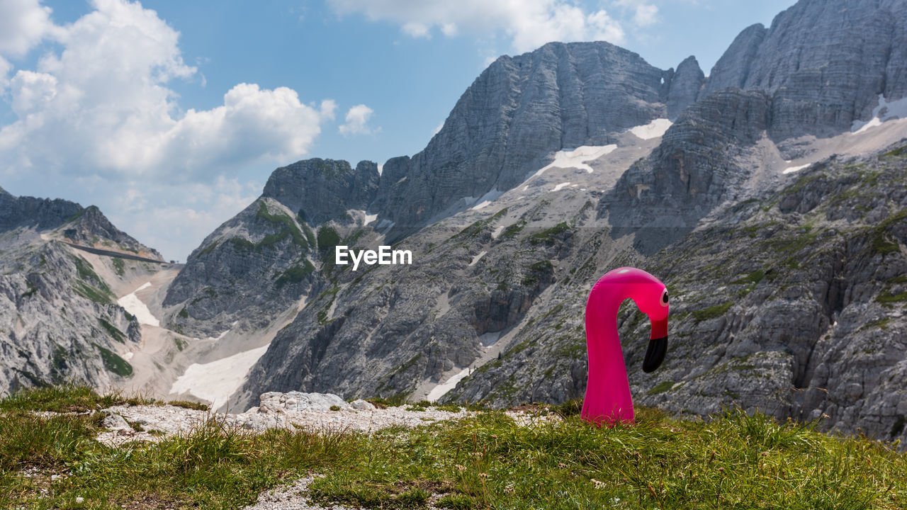 Inflatable Flamingo On Field By Mountains Against Sky