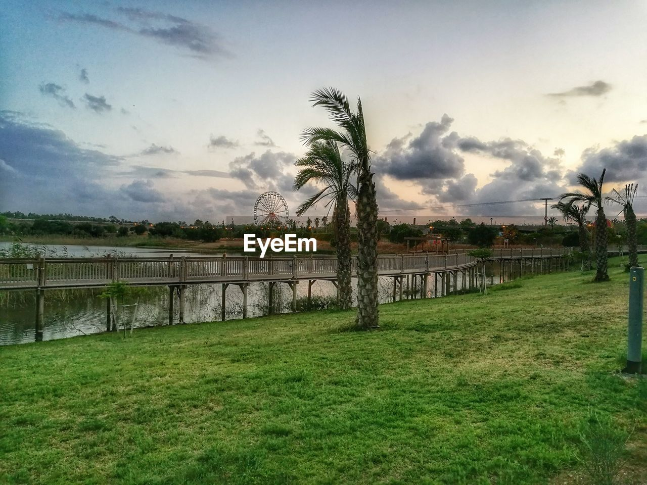 grass, sky, tree, water, cloud - sky, nature, green color, field, river, scenics, outdoors, bridge - man made structure, built structure, palm tree, landscape, day, no people, growth, architecture, beauty in nature