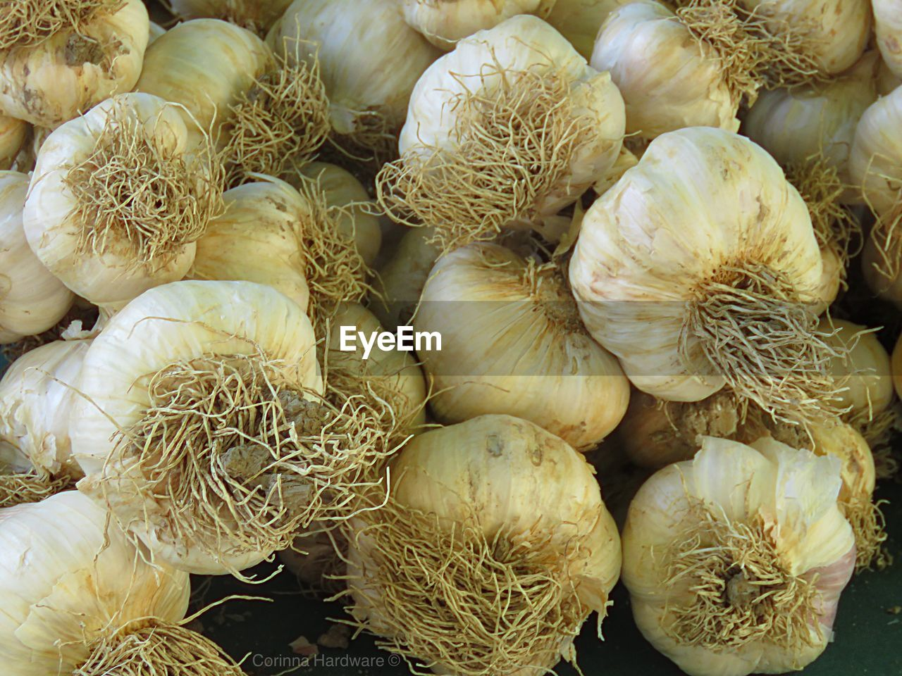 food and drink, food, vegetable, garlic, garlic bulb, healthy eating, full frame, freshness, backgrounds, no people, plant bulb, close-up, indoors, day